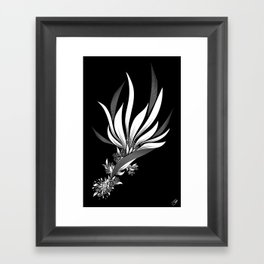 Bird of Paradise Framed Art Print