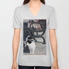 Boardwalk Kitty Unisex V-Neck