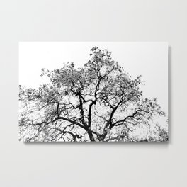 Tree - Black and White Metal Print