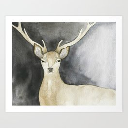 Charcoal Stag Art Print