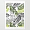 Palm tree leaf by mmartabc