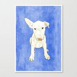 English bull terrier puppy pop art Canvas Print