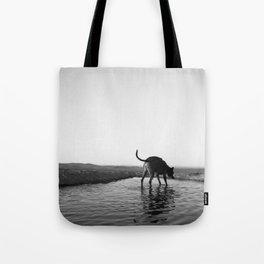 The Dog, The Pool & The Horizon Tote Bag