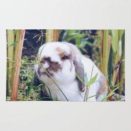 Bunny smiling in the garden Rug
