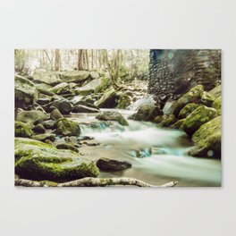 Streams of Tennessee Canvas Print