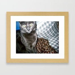Chalupa Framed Art Print