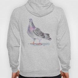 Nervous pigeon Hoody