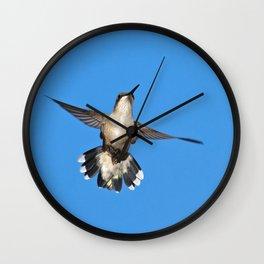 Flying Hummingbird Wall Clock