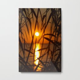 Finding Peace Metal Print