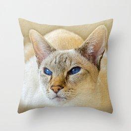 SIAMESE CAT LOVE Throw Pillow