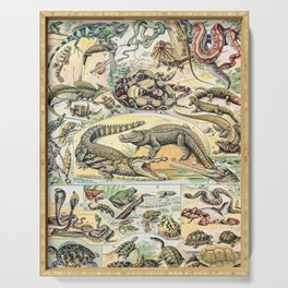 Reptiles by Adolphe Millot // XL 19th Century Snakes Lizards Alligators Science Textbook Artwork Serving Tray