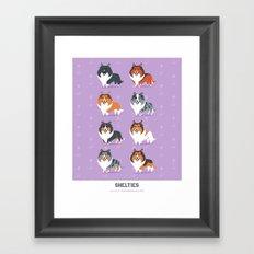 Shelties Framed Art Print