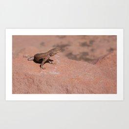 Big Lizard Art Print