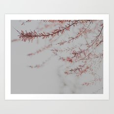 Soft Dusty Pink Lullaby Art Print