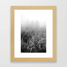 grasses Framed Art Print