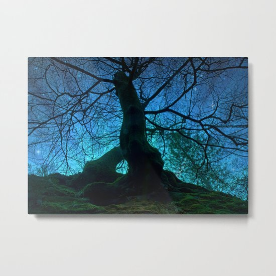 Tree under a spangled sky (light) Metal Print