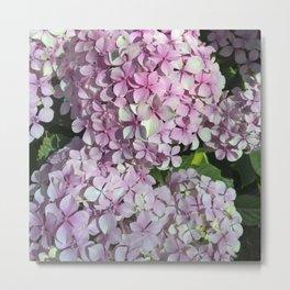 Hotham Park Florals Metal Print