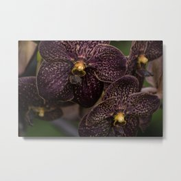 Deep Purple Orchids Metal Print