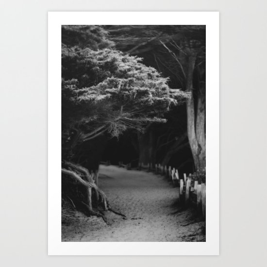 Pfeiffer Beach trail Art Print