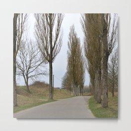 Road and trees 1 Metal Print