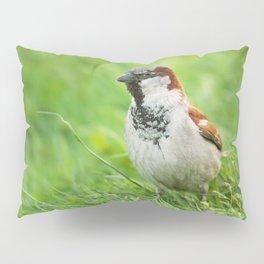 Male House Sparrow Pillow Sham