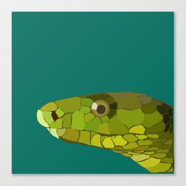Green Mamba Canvas Print