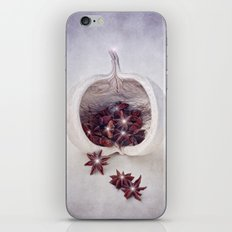 WINTER SECRETS II iPhone & iPod Skin