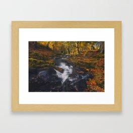 The Golden Carpets Framed Art Print