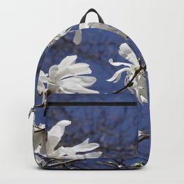 Star filled sky (Star Magnolia flowers!)      Edit Backpack