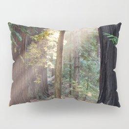 Hiding From The Dark Pillow Sham