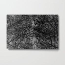 TREE 5 Metal Print