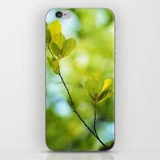 Breath of life iPhone & iPod Skin