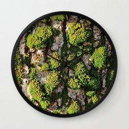 Green Moss Beauty Wall Clock
