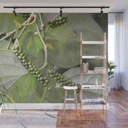 Green Pepper plant Illustration Wall Mural