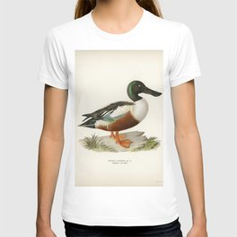 Cinnamon teal (Spatula cyanoptera) illustrated by the von Wright brothers T-shirt