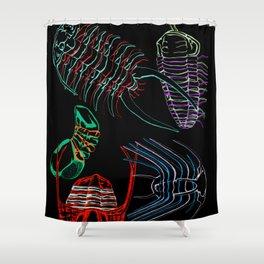 Ordovician Era Trilobites 2 Shower Curtain