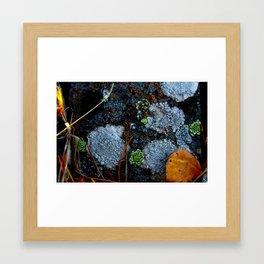 mountain moss Framed Art Print