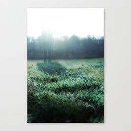 If I Were the Frost... Canvas Print