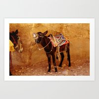 donkey Art Prints featuring Donkey by Noelle Abbott