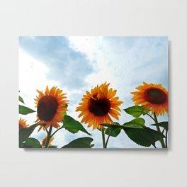 Deformed Sunflower Metal Print