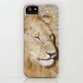Friendly lion iPhone Case