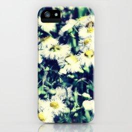 Chamomile 2 iPhone Case