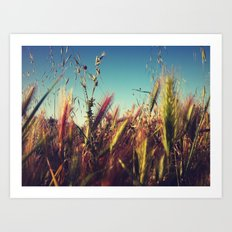 Nature.. Art Print