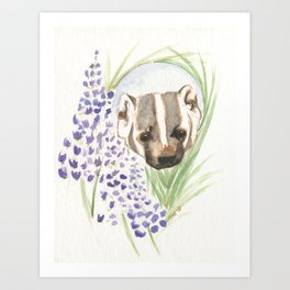 The American Badger Art Print