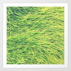 Turf. Art Print