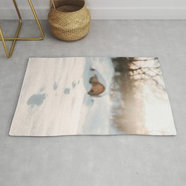 Footsteps In Snow | Winter Photography | Winter Scene With Footsteps In Snow  Rug