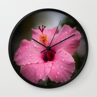 hibiscus Wall Clocks featuring Hibiscus by David Gallo