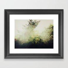 Glimpse Of Eden Framed Art Print