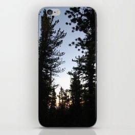 Twilight in the Pines iPhone Skin