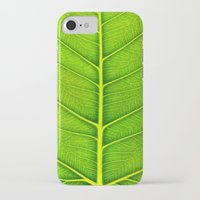 leaf iPhone & iPod Cases featuring Leaf by Patterns and Textures